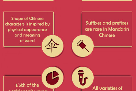 Chinese Language Fact Infographic