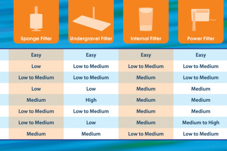 Choosing an Aquarium Filter Infographic