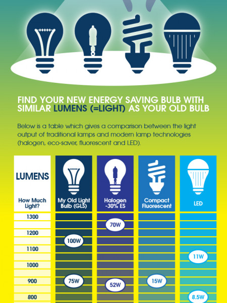 Choosing an LED light bulb Infographic