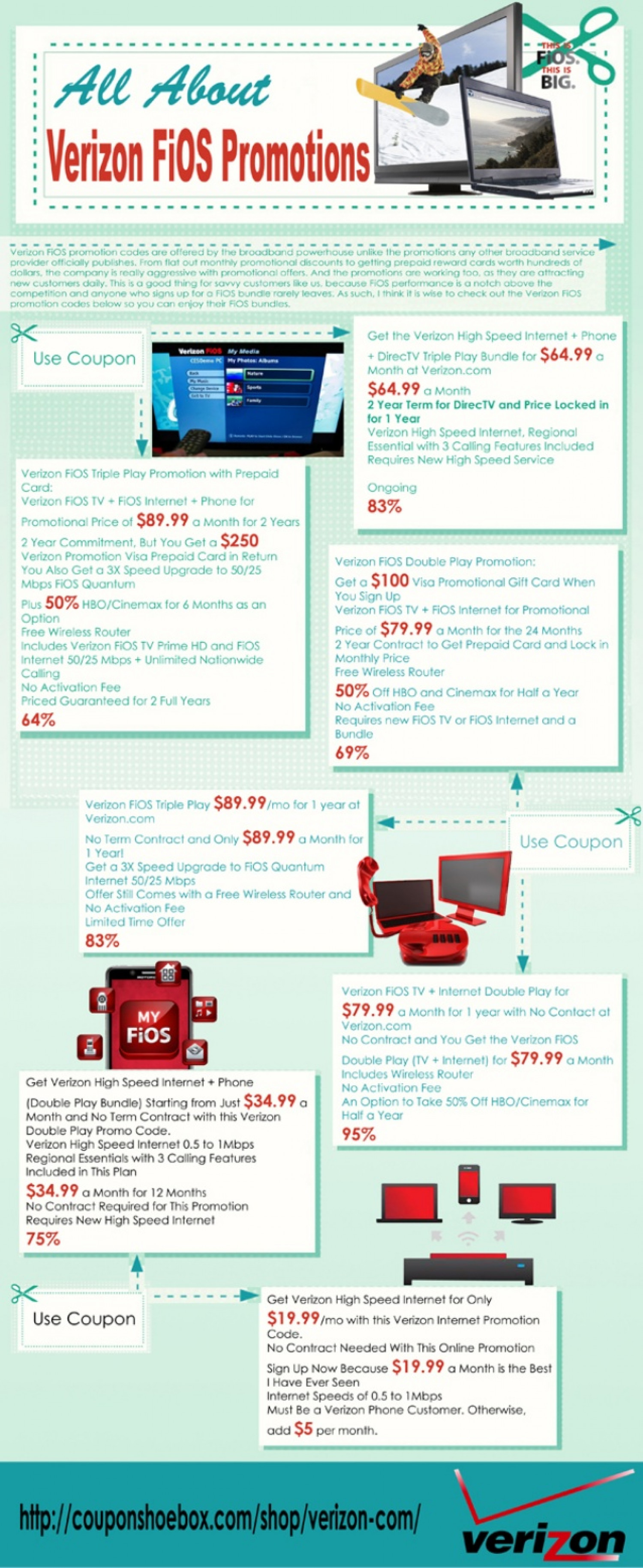 Choosing The Best FiOS Package Infographic