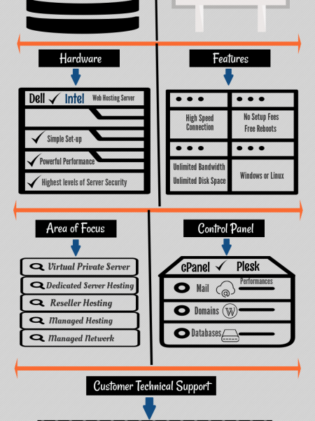 Choosing the Best Web Hosting Company Infographic