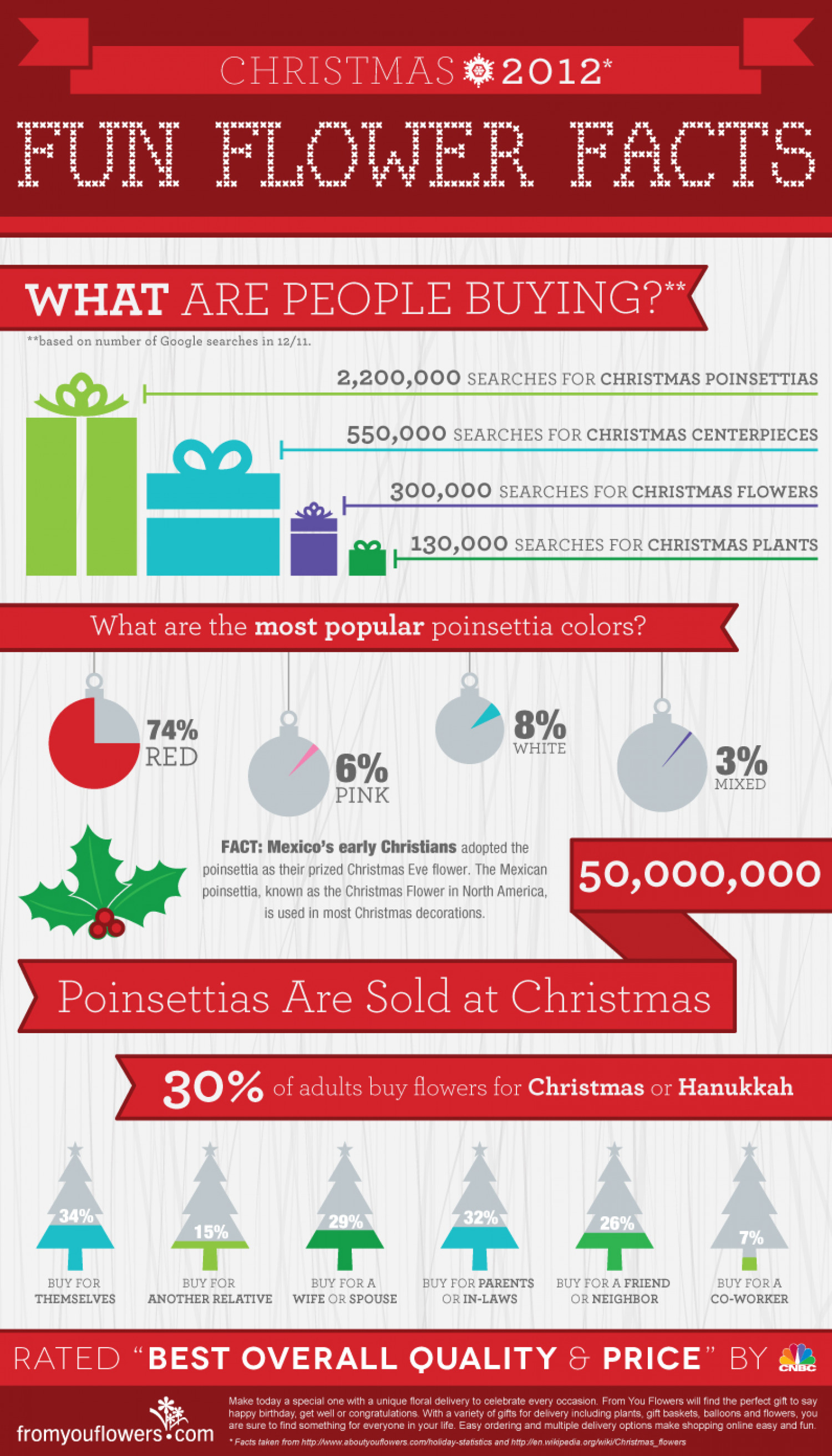 Christmas Flower Facts Infographic