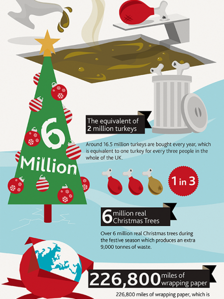 CHRISTMAS IN THE BIN Infographic