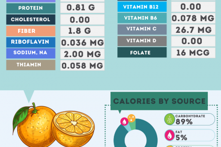 Clementine fruit nutrition facts Infographic