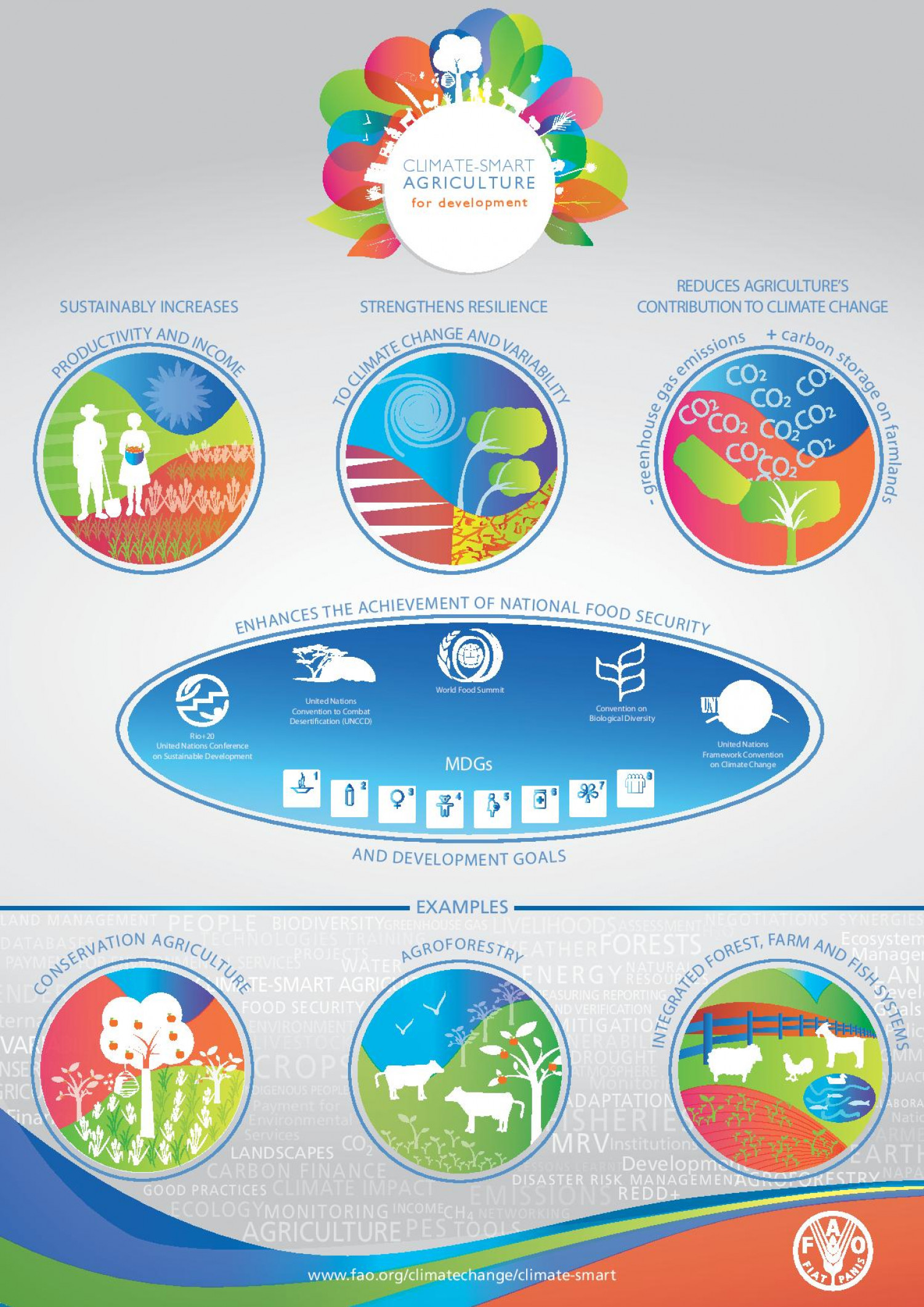 Climate smart agriculture for development Infographic
