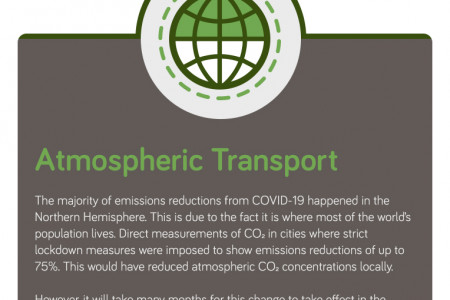 CO2 Levels Continued to Rise During Pandemic - 2020 Infographic