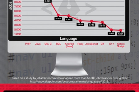Coding Job Outlook and Growth Infographic