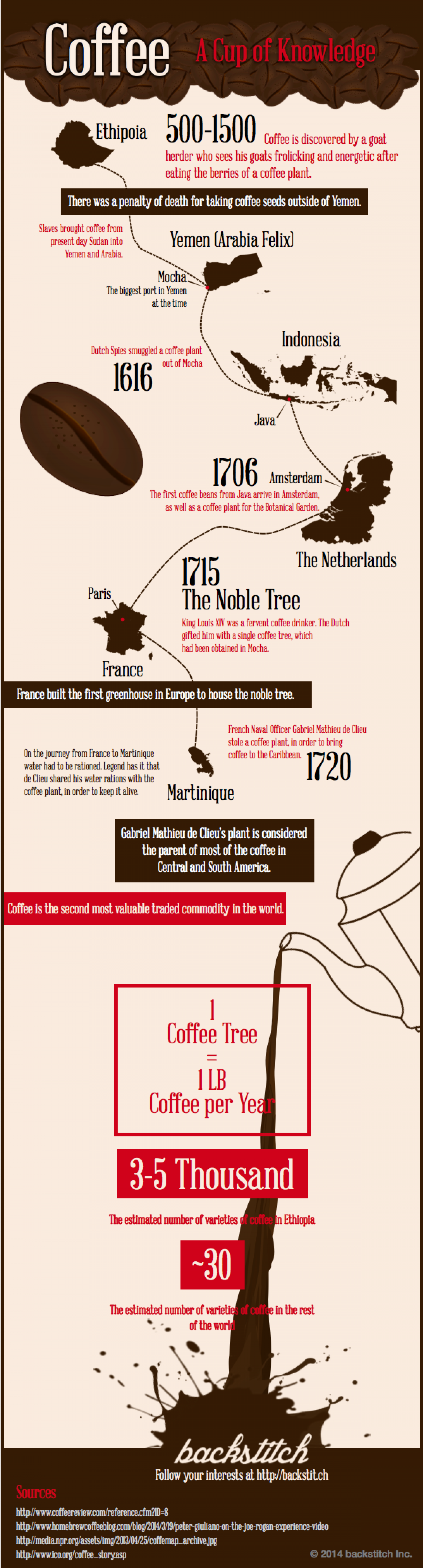 Coffee: A Cup of Knowledge Infographic