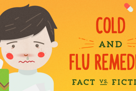Cold & Flu Remedies: Fact vs. Fiction Infographic