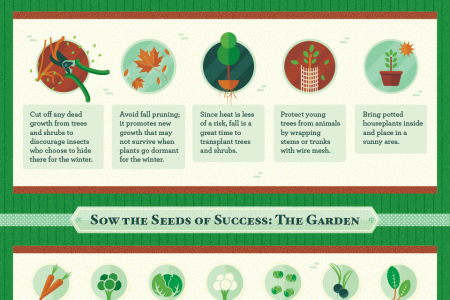 Cold as Ice: Prepping Your Yard Before Winter Hits Infographic