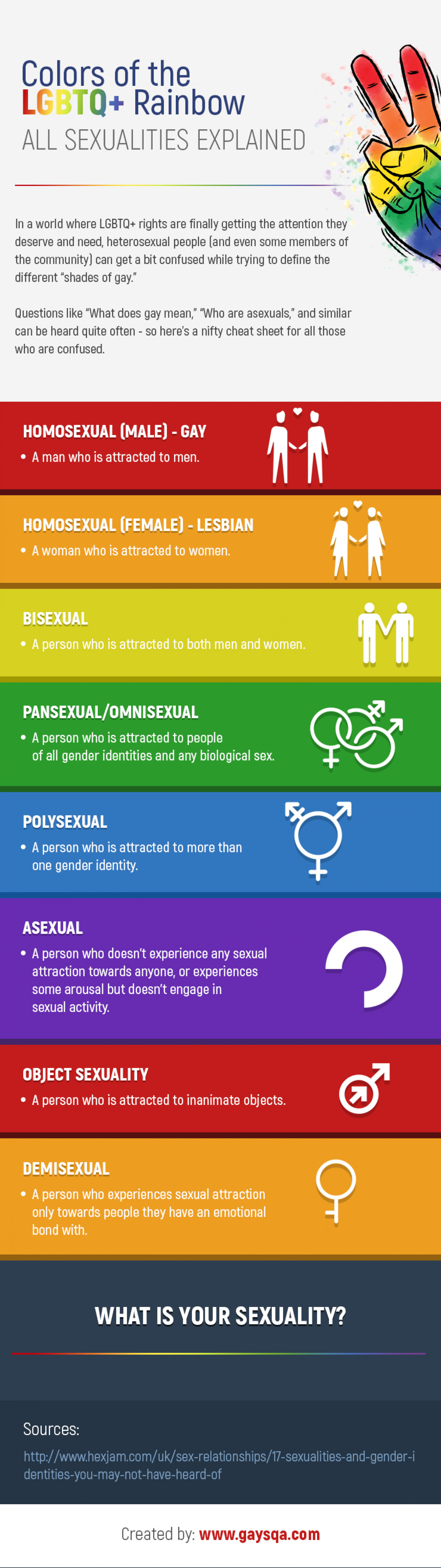 Colors of the LGBTQ+ Rainbow All Sexualities Explained Infographic