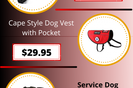 Comfortable Pet Equipment Collection at All Access Canine Infographic