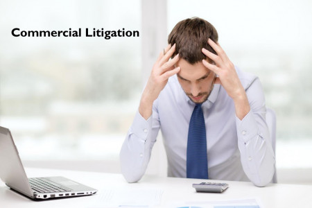 Commercial Litigation - Law Essentials Infographic