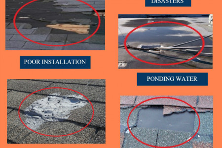 Commercial Roofing – Risk Factors and Maintenance Infographic
