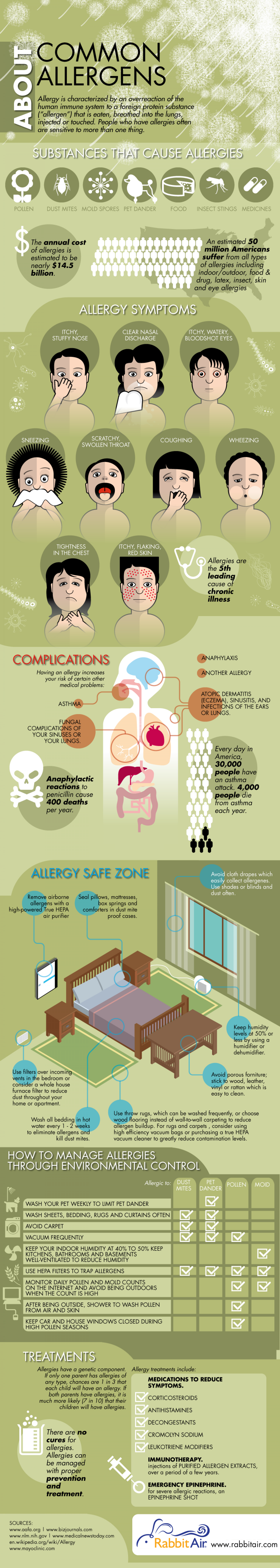 Common Allergens Infographic