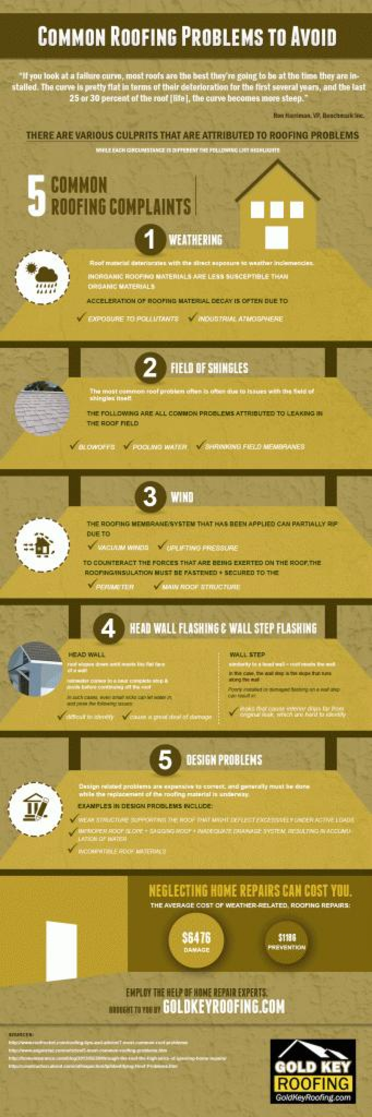 Common Roofing Problems to Avoid Infographic