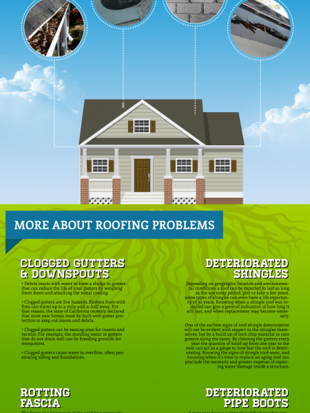 Common Roofing Problems Infographic