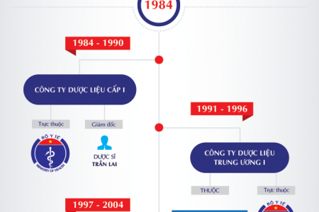 Company Timeline Infographic Infographic