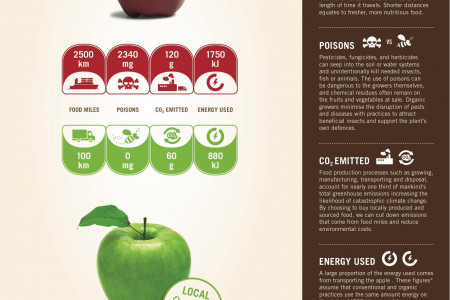 Comparing Apples with Apples Infographic