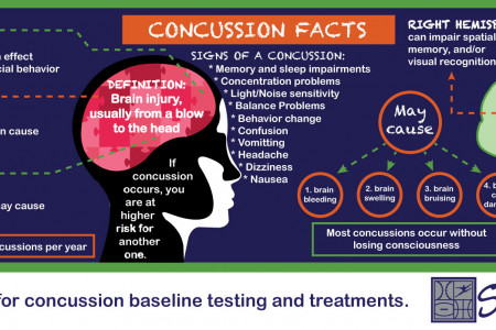 Concussion Facts InfoGraphic  Infographic