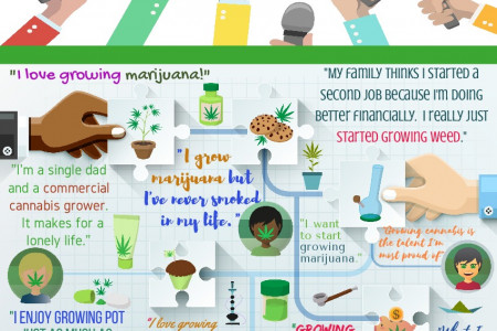 Confessions of a Weed Grower Infographic