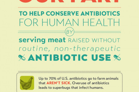 Conserving Antibiotics for Human Health Infographic