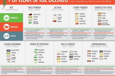 Popular Spice Blends Infographic