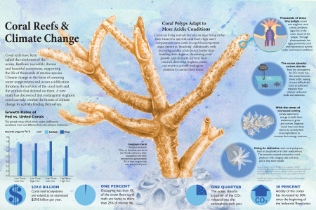coral reefs and climate change Infographic