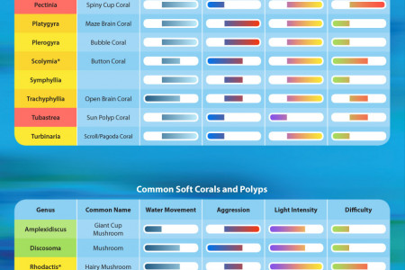 Coral Requirements & Difficulty Infographic