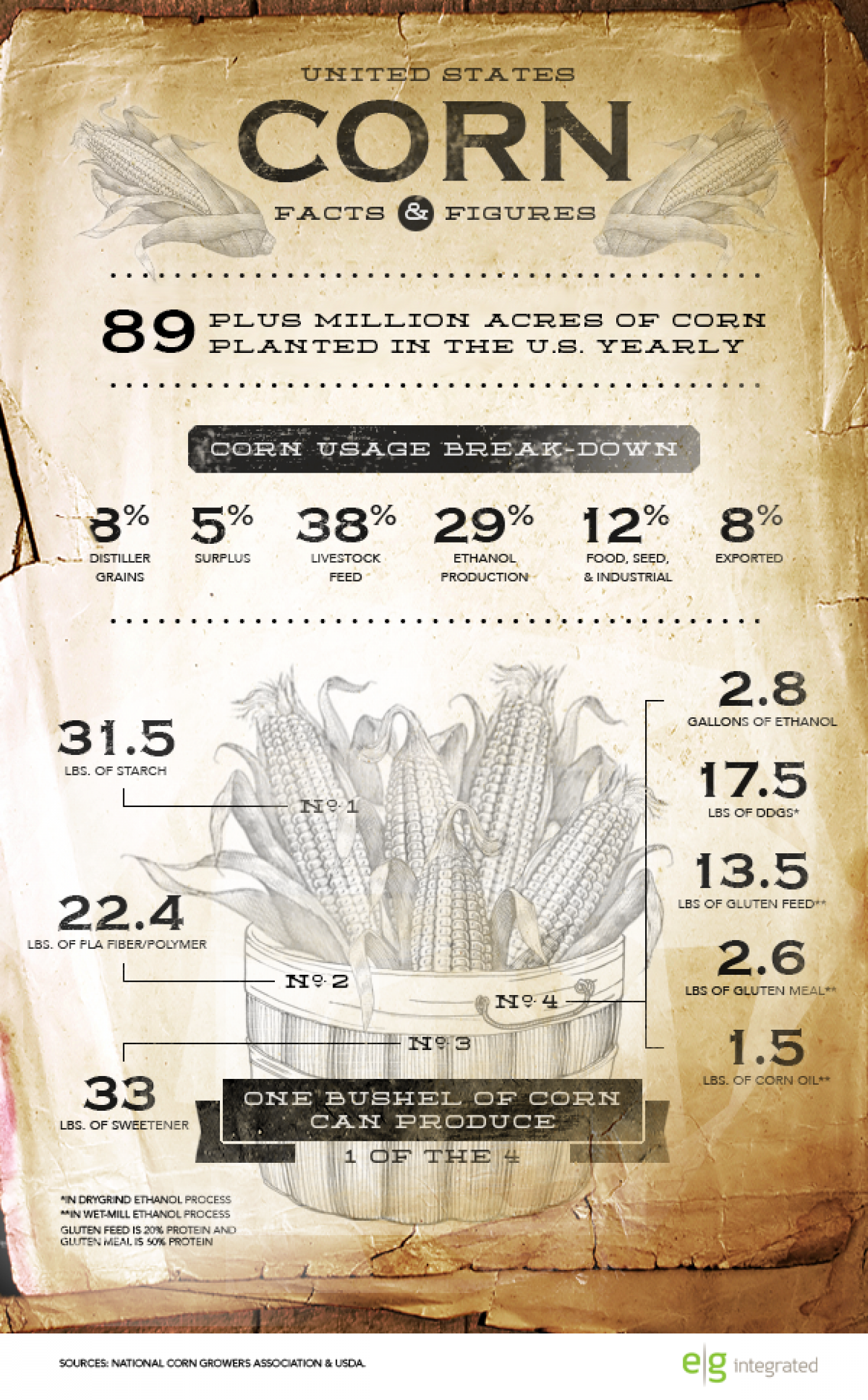 Corn Facts & Figures Infographic