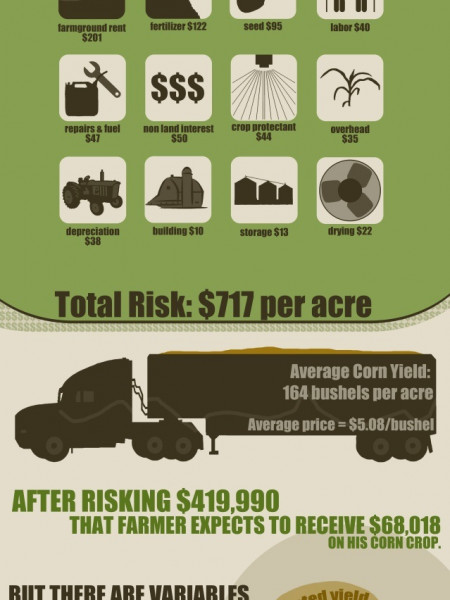 Corn Farming in USA Infographic