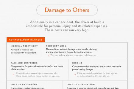 Cost of a Car Without Having Insurance Infographic