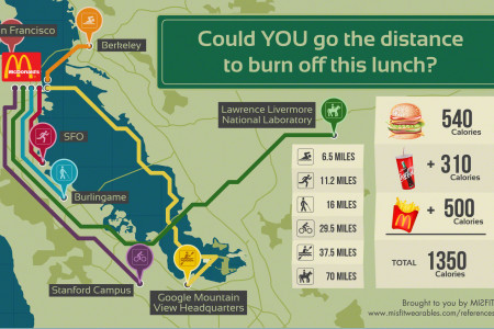 Could YOU go the distance to burn off this lunch Infographic