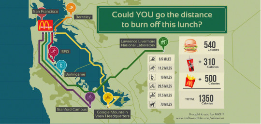 Could YOU go the distance to burn off this lunch