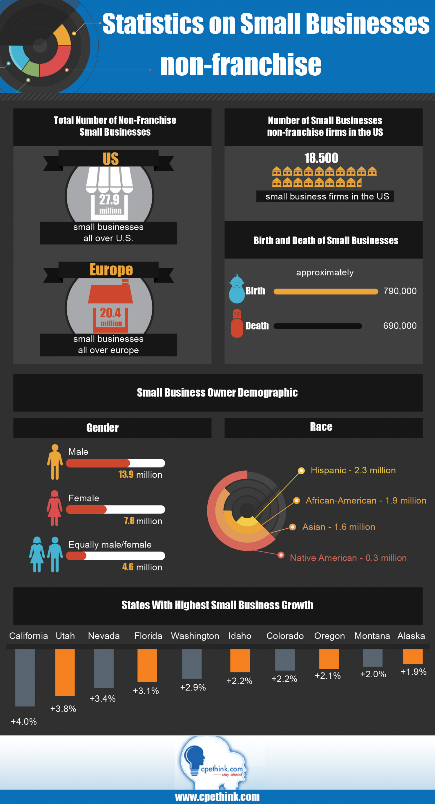Statistics on Small Businesses Non-Franchise Infographic