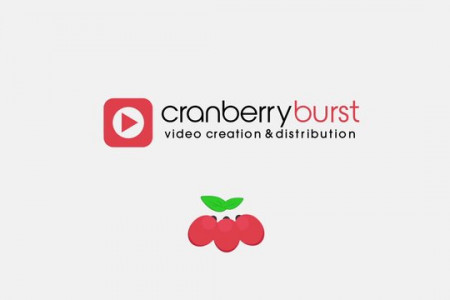 Cranberry Burst Vector Animation Infographic