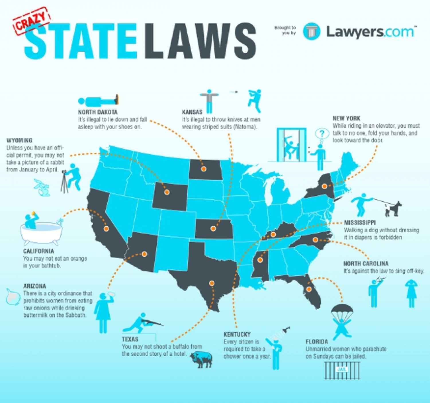Crazy State Laws  Infographic