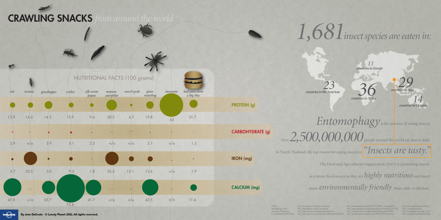 Creepy Crawly Snacks Around The World  Infographic