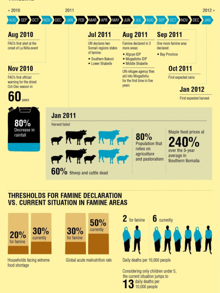 Crisis In The Horn Of Africa Infographic