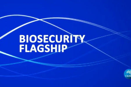 CSIRO Biosecurity Motion Graphic Infographic
