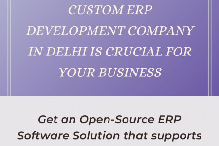 Custom ERP Development Company in Delhi is Crucial For Your Business Infographic