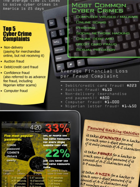 Cyber Crime Infographic
