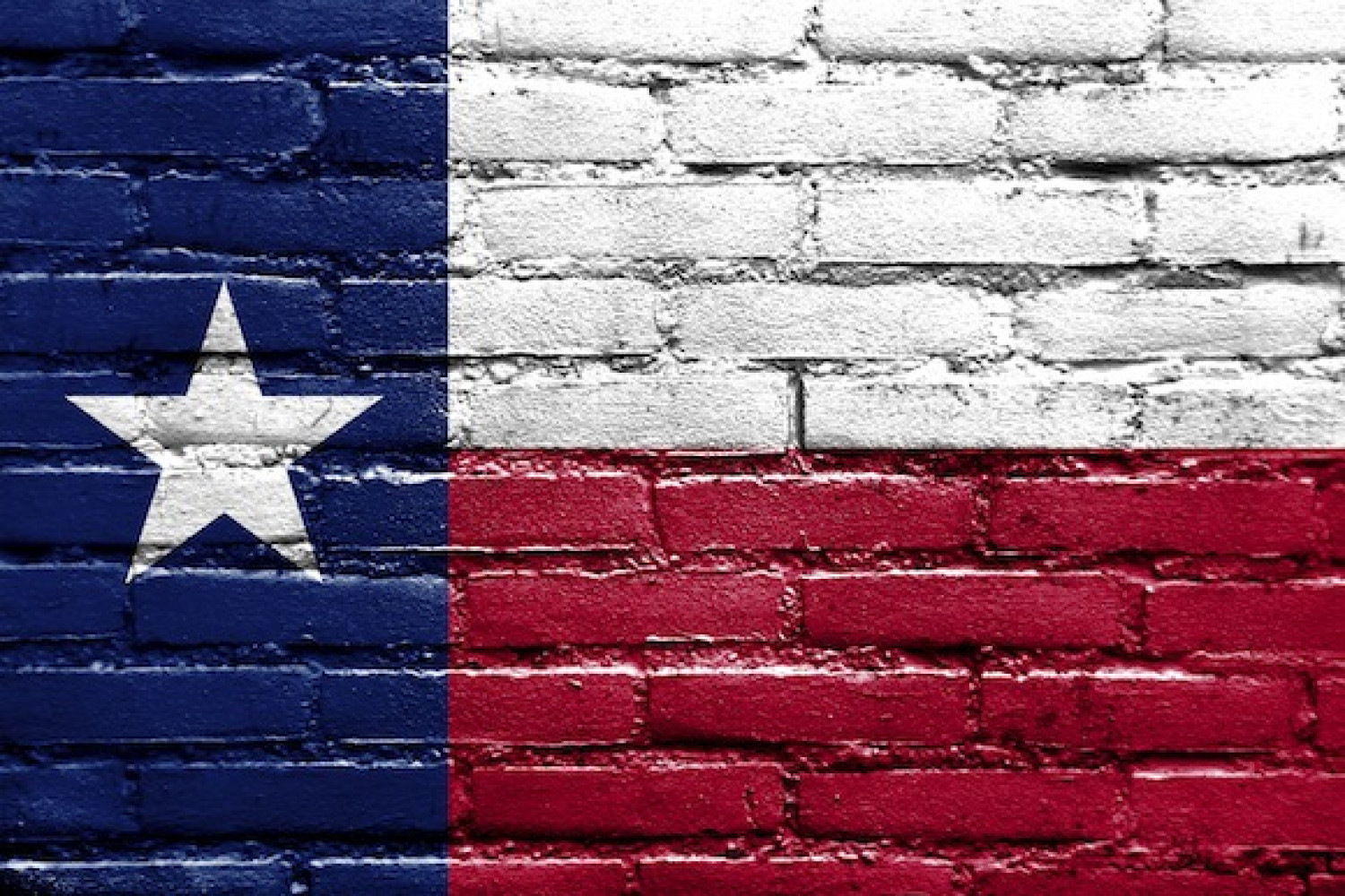 Dallas vs. Houston: Which Big City Is the Star of Texas? Infographic
