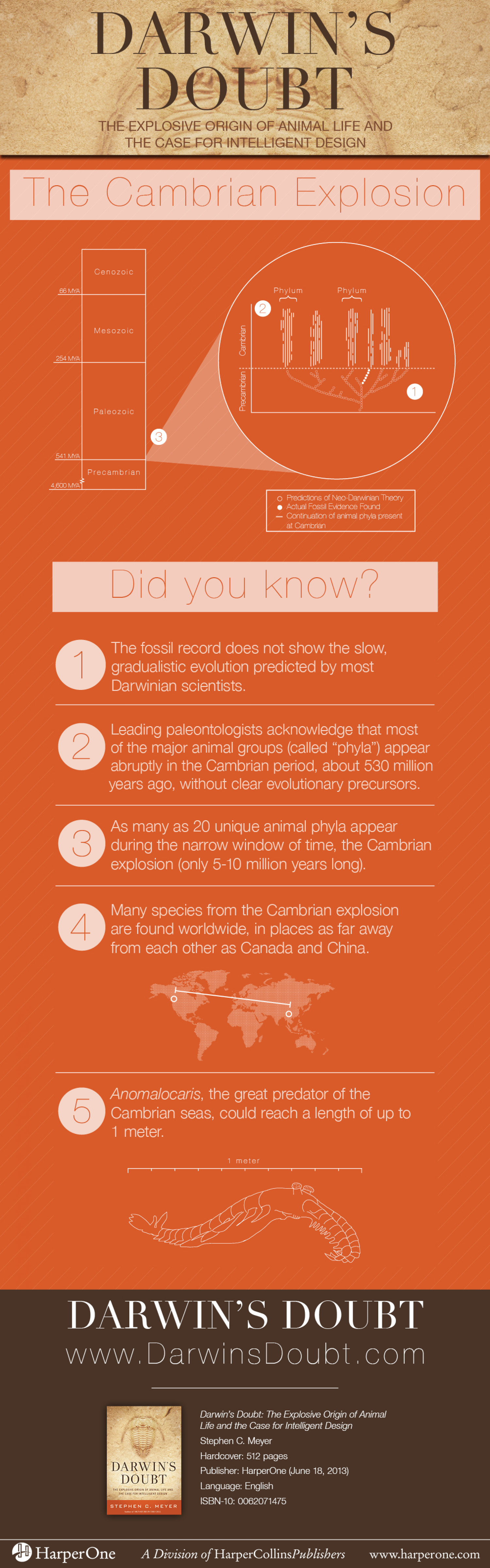 Darwin's Doubt, The Cambrian Explosion Infographic