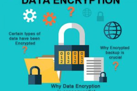 Data Protection: Why Encryption is Crucial? Infographic