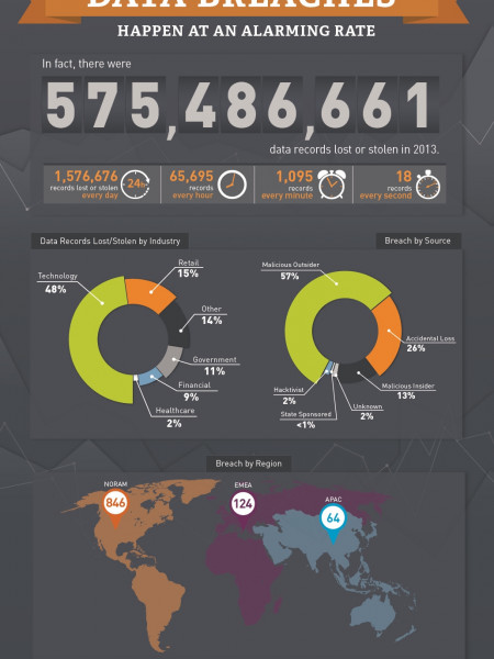 Data Breaches in 2013 Infographic