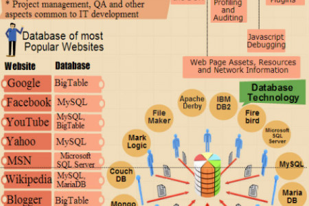 Database and Languages Which Use by Popular Website Infographic