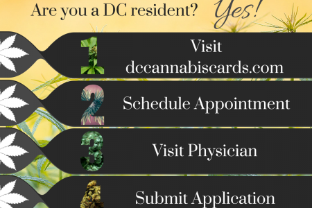 DC Cannabis Cards Side 1 Infographic