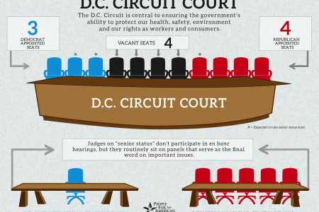 D.C. Circuit Court Infographic