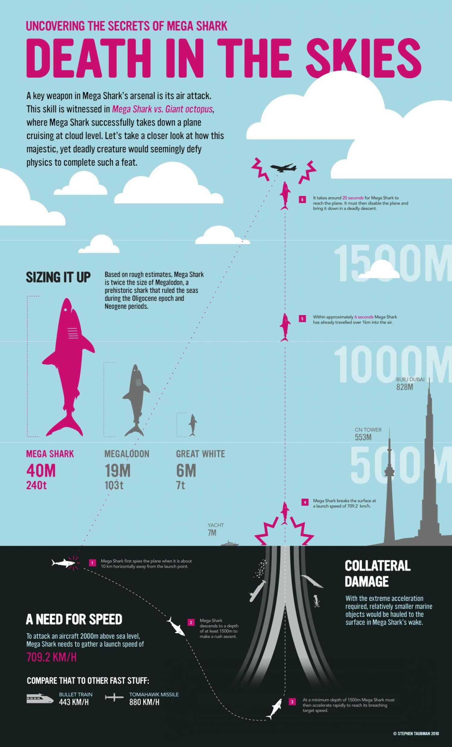 Death in the Skies Infographic